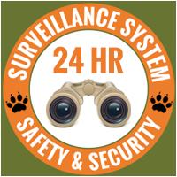 24 HR SurveillanceSystem